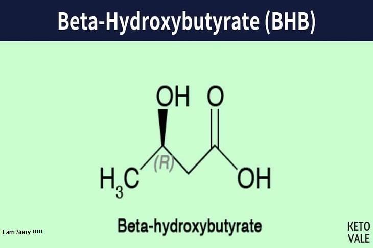 beta-hydroxybutyrate-BHB