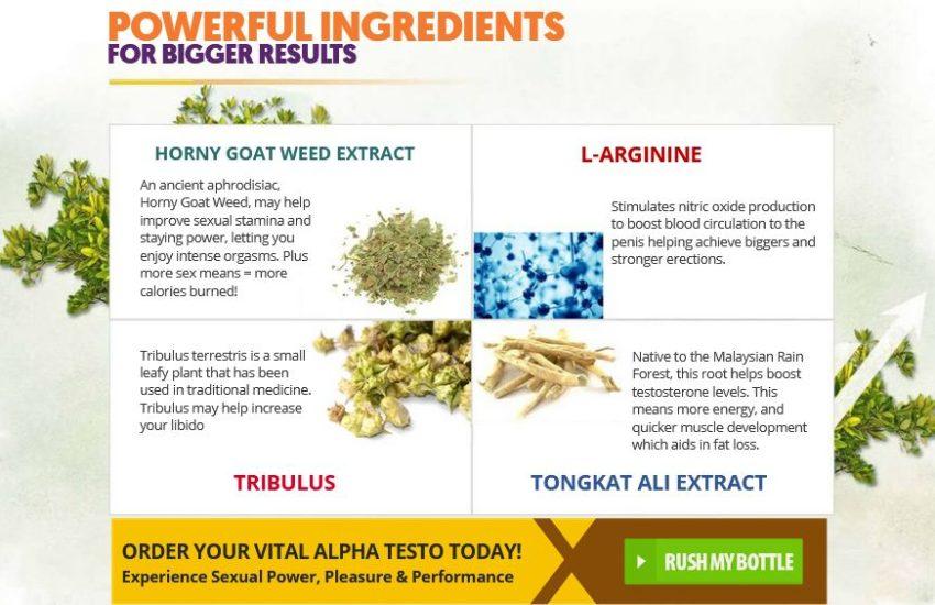 Vital Alpha Testo Ingredients